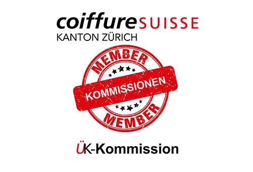 Bild-UK-kommission